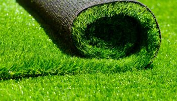 synthetic-lawn-2048px-802551536-3×2-1